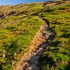 31  G Trail Up V