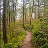 21  G Trail Up V