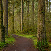 13  G Lewisville Trail V