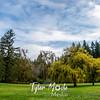 16  G Lewisville Willows