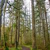 12  G Lewisville Trail V
