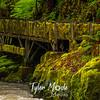 5  G Cedar Creek Flume