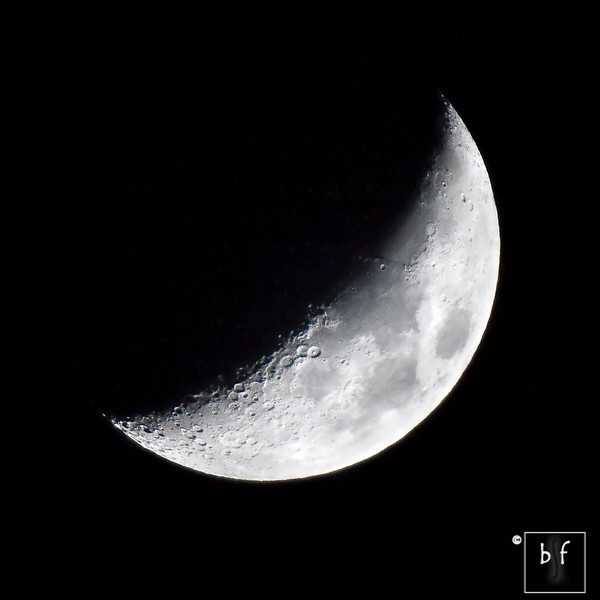The waxing crescent moon was at 34% of full at 8:10pm as seen from my front deck in San Jose, CA. Photo taken at f/5.6, 600mm (960mm in 35mm), 1/250, ISO 200, mirror lockup enabled.