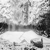 12  G Multnomah Falls Base BW