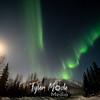 14  G Coldfoot Aurora Moon