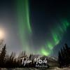 17  G Coldfoot Aurora Moon