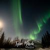 16  G Coldfoot Aurora Moon