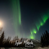 13  G Coldfoot Aurora Moon