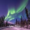27  G Coldfoot Aurora