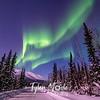 29  G Coldfoot Aurora