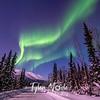 32  G Coldfoot Aurora