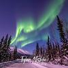 28  G Coldfoot Aurora