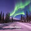 24  G Coldfoot Aurora