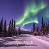 23  G Coldfoot Aurora