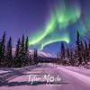 22  G Coldfoot Aurora