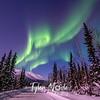 26  G Coldfoot Aurora