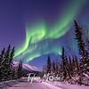 25  G Coldfoot Aurora