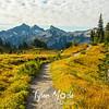 64  Trail and Tatoosh
