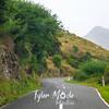 31  G New Zealand Road