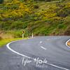 14  G New Zealand Road
