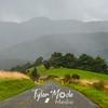 55  G New Zealand Road