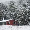 31  G Snowy Cabin