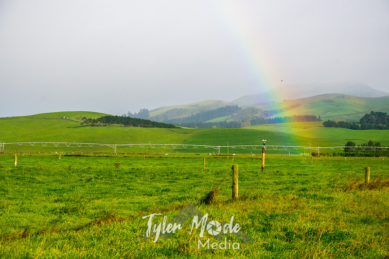 2  G Rainbow and Field