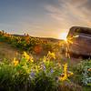 19  G The Dalles Mountain Ranch Flowers Sunrise Car