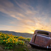 15  G The Dalles Mountain Ranch Flowers and Car