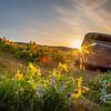 18  G The Dalles Mountain Ranch Flowers Sunrise Car