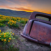8  G The Old Car and Wildflowers