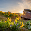 23  G The Dalles Mountain Ranch Flowers Car
