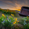 14  G The Dalles Mountain Ranch Flowers and Car