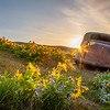 21  G The Dalles Mountain Ranch Flowers Car