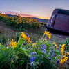 2  The Old Car and Wildflowers