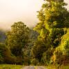 33  G Mt  Aspiring NP Golden Road V