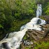 54  G McLean Falls