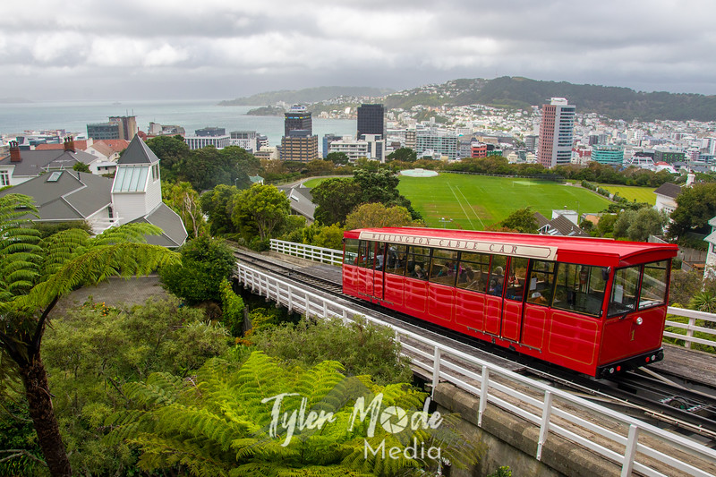 3  G Wellington and Tram