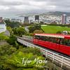 3  G Wellington and Tram