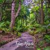 25  G Botanical Gardens Trail