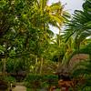 15  G Garden View