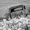 17  G Dalles Mountain Ranch Car Front BW