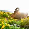 40  G Dalles Mountain Ranch Car
