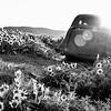 43  G Dalles Mountain Ranch Car BW