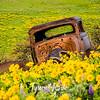 18  G Dalles Mountain Ranch Car Front