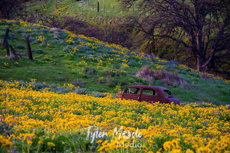 5  G Dalles Mountain Ranch Car