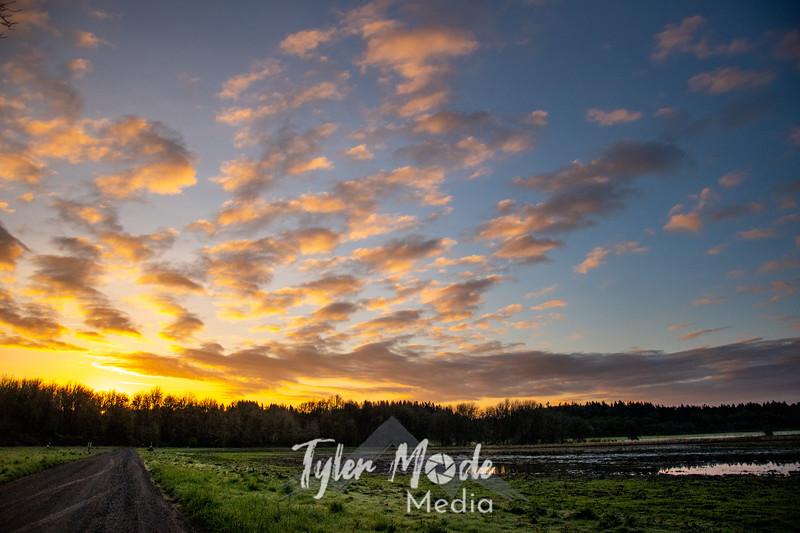 83  G Ridgefield Morning