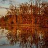 100  G Ridgefield Reflections