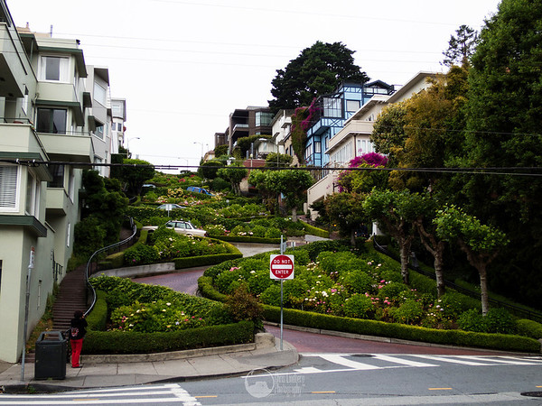 Lombard Street.  Curviest street in the world.  Not really anything to do with Alcatraz, but it was on the way.  And it is nifty.