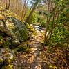 30  G Cascade Falls Trail Views V